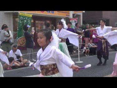 彩羽-iroha- 晴レ君へ 調布よさこい2019