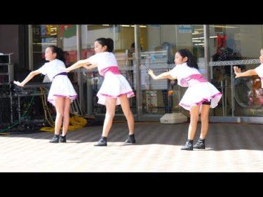 地元のお祭り|学生ダンス|お揃いの衣装で溌剌とした振付!