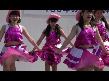【4K高画質】まつり ダンス サンバ 踊り フェスティバル65