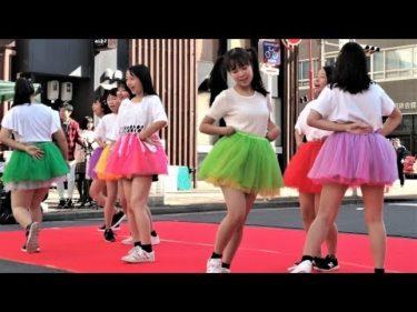 インターアクトクラブ 春日丘高校 ダンス ① 名駅西ツバキフェスタ2019